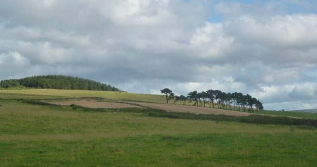 view from the road to chesters, scottish borders.